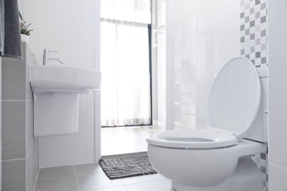 ¿Cuáles son los mejores productos para limpiar el baño sin tanto esfuerzo?