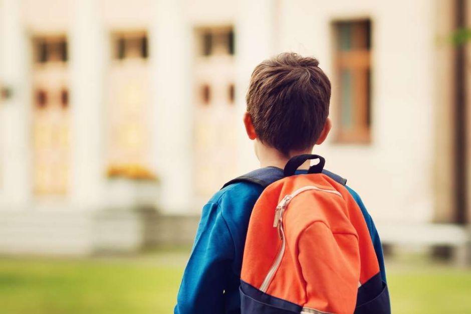Hacia la humanización del sistema educativo