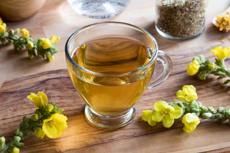 ¿Cuáles son las propiedades del gordolobo para curar la tos?