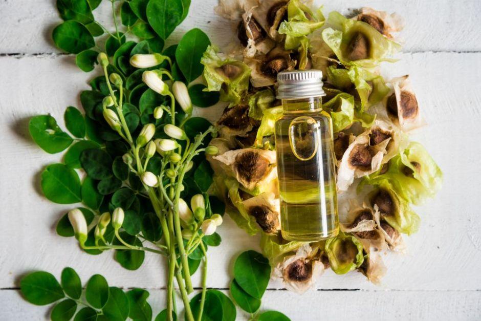 3 productos de moringa que fortalecen el cabello y estimulan el crecimiento