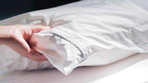 ¿Necesitas un protector de almohada?