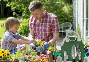 Las 5 mejores herramientas para cuidar de tu jardín y patio durante la cuarentena
