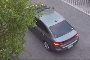 Encuentran dos cadáveres en auto de latinas desaparecidas en Carolina del Norte