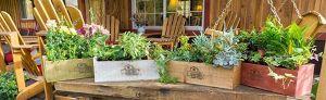 Los 5 mejores kits para crear tu propio huerto en casa