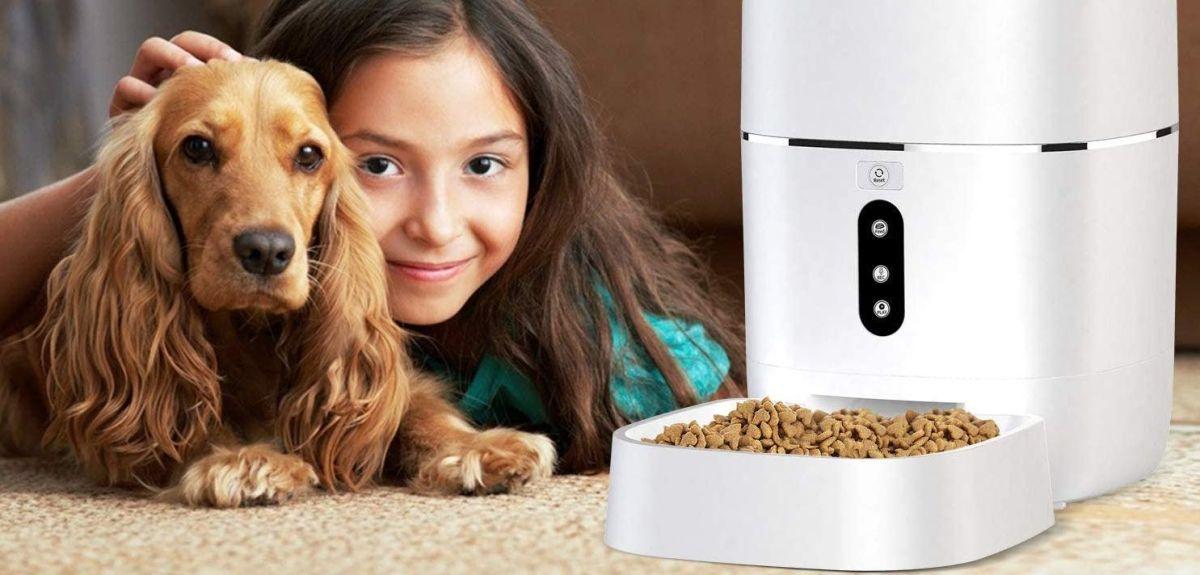 ¿Cúal es el mejor alimentador automático para mascotas?