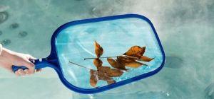 Las mejores redes, filtros y cobertores para cuidar tu piscina este verano