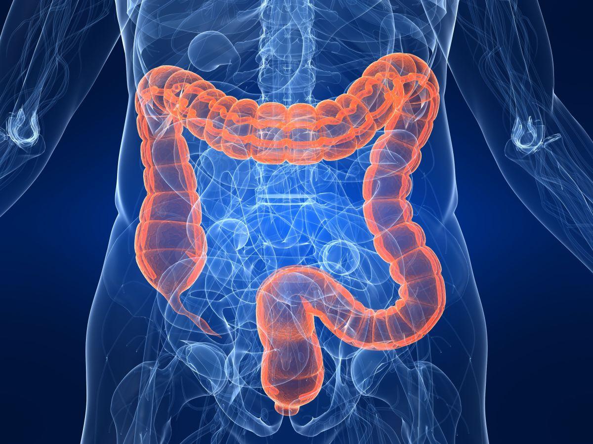 Los mejores licuados para mantener tu colon sano