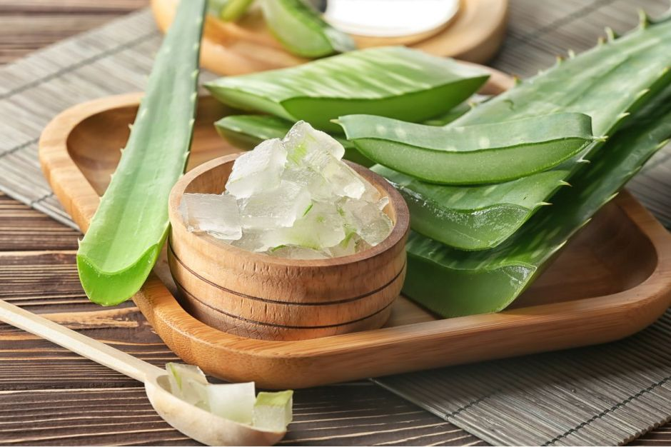 Aloe Vera: 5 productos especiales para el cuidado de tu piel