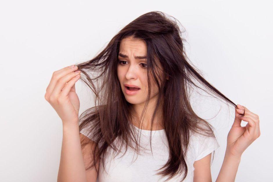 Aceites para el cabello: Opciones hidratantes de raíz a punta