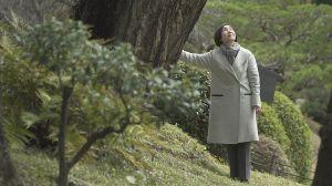 Los árboles que sobrevivieron a la bomba atómica en Hiroshima hoy siembran un mensaje de paz en el mundo