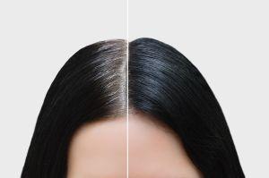 Los mejores tintes de cabello si lo tienes oscuro que cubren bien las canas sin maltratarlo
