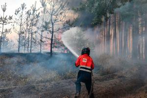 Se vuelve viral imagen de la Virgen que quedó intacta tras un incendio en Argentina