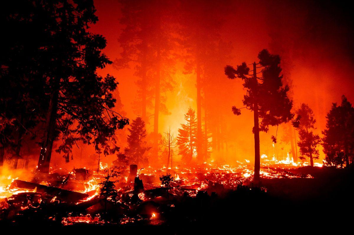 El incendio Creek quema el bosque en Fresno y Madera.