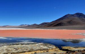 Así de espectacular se ve la Laguna Colorada de Bolivia desde el espacio