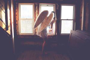 ¿Qué son los portales angelicales y para qué sirven?