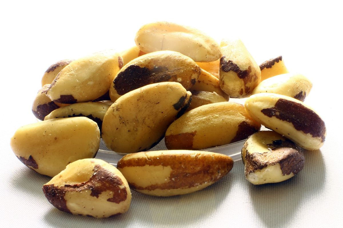 Las nueces de Brasil tienen componentes antioxidantes y que combaten la inflamación.