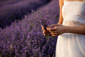 Descubre el poder curativo de la lavanda: dos remedios caseros para relajar el cuerpo y eliminar el estrés