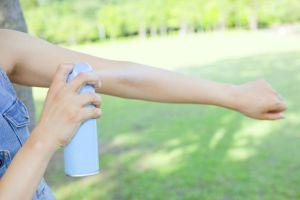 Los 4 repelentes de insectos más efectivos para usar en el patio de tu casa