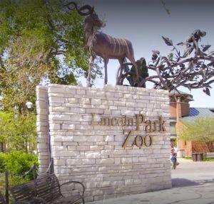 Zoológicos de Chicago reabrirán sus puertas al público en marzo