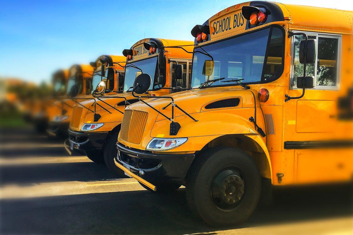Autobuses escolares.