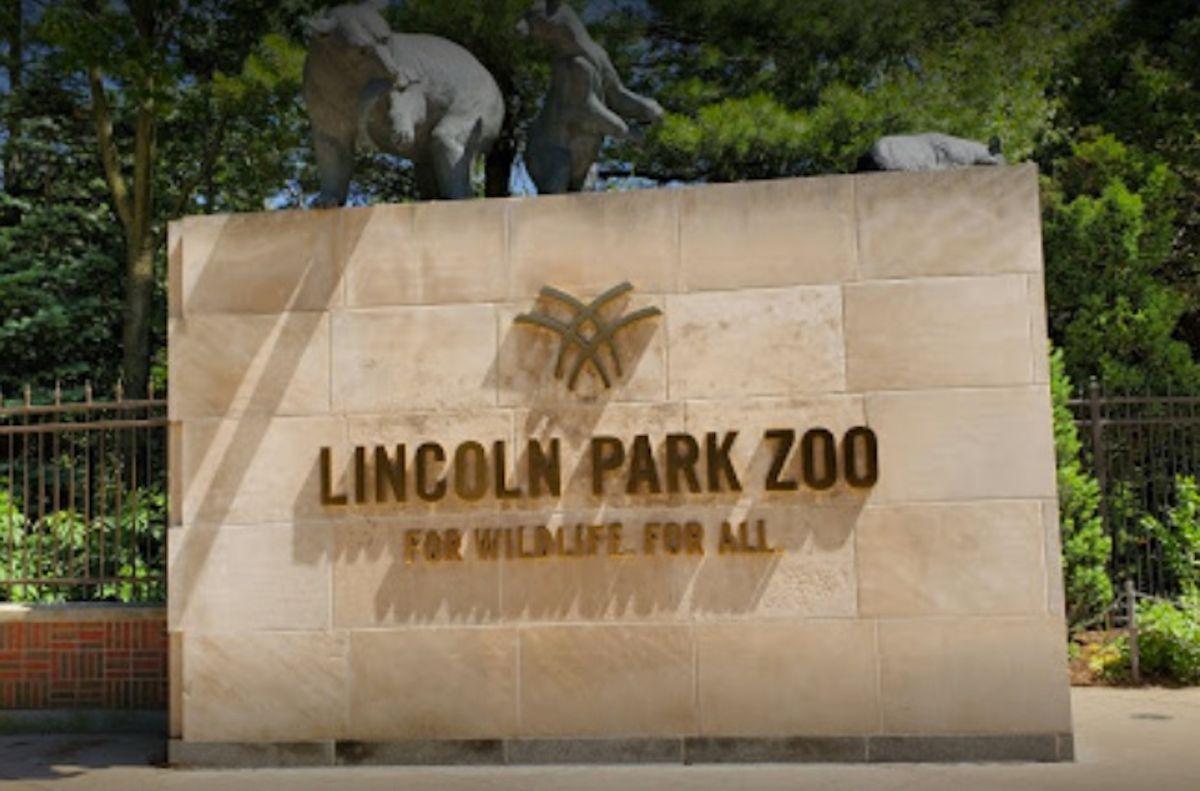 Zoológico de Lincoln Park de Chicago reabre el viernes