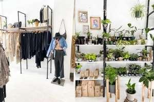 Tienda ecológica de Pilsen ofrece plantas de interiores cuya popularidad ha aumentado durante la pandemia